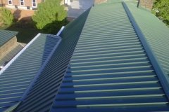 standing seam in forest green